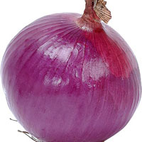 Indian Fresh Onion