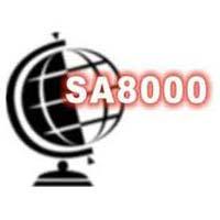 Social Compliance Audit Services