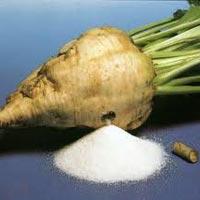 Refined Beet Sugar
