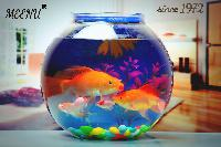 Background Inbuilt Fish Bowl