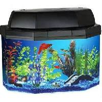 Aquarium House Fish Tanks