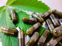 Herbal Extract Capsules