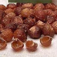 Soap Nut Shell