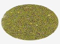 Green Gram Lentil