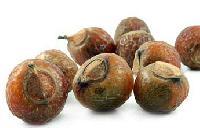 Soap Nut