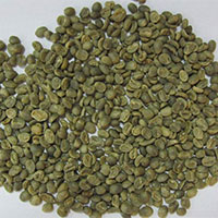 Robusta A Coffee Beans