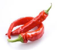 Chili Pepper