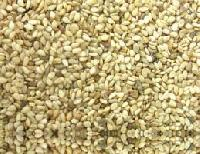 Roasted White Sesame Seeds