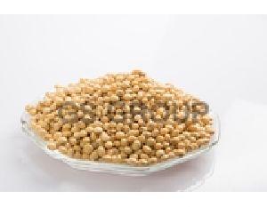 Soya Bean Seeds