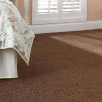 Wall Carpet Installation Services