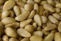 Pine Nut