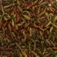 Bird's eye chilli oven dried for NAMKIN industry