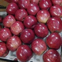 Indian Fresh Apples