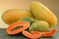 Fresh Papaya , Carica Papaya