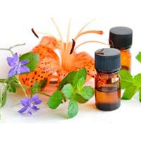 Essential Oils Project