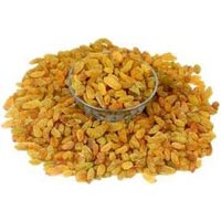 Golden Green Medium Long Sangli Raisins