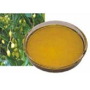 Organeem Neem Oil