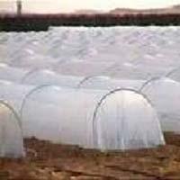 Non Woven Crop Protection Cover
