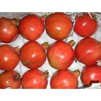 Indian Fresh Pomegranate