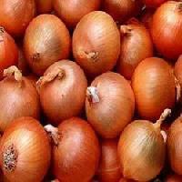 Yellow Onion Seeds