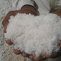 Solar Sea Salt