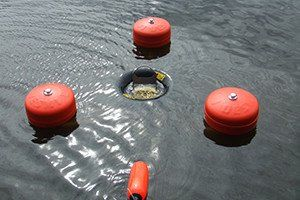 Seaworthy Oil Skimming System