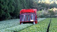 Tea Harvesting Machine