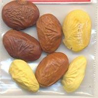 Monoherbal Akota Seeds