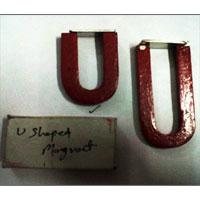 U-Shaped Magnet