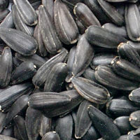 Black Sunflower Seeds