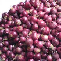 Krishnapuram Onions