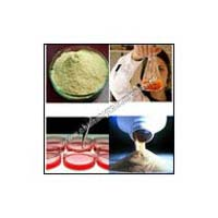 Yeast Extract Powder-meat Extract & Biological Extract