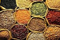 Packed Pulses