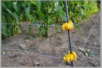 Solar Agriculture Fencing Systems