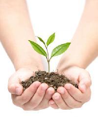 Biogreen Liquid Bio Fertilizers