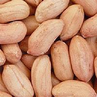 Peanuts Kernels