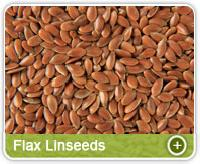 Flax Linseeds