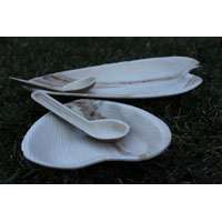 Eco Friendly Wedding Disposable Plates & Dinnerware