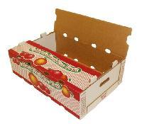 Fruit & Vegetable Packing Box