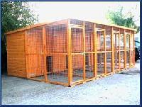 pet animals kennel