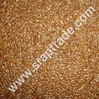 Black Mustard Seeds 01