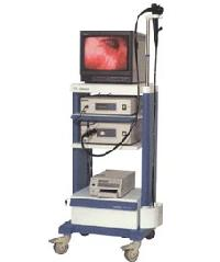 Video Endoscope System