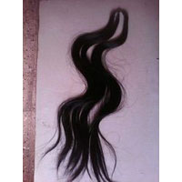 Gangavan Artificial Hair