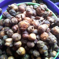 Chick Peas - Channa