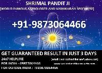 Astrologers, Vashikaran Services