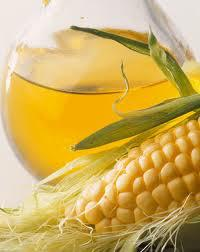 Corn Seed Oil
