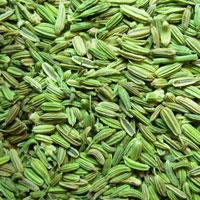 Premium Quality Fennel Seeds