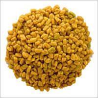 Premium Quality Fenugreek Seeds