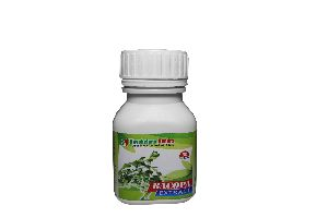 Bacopa Extract Capsules