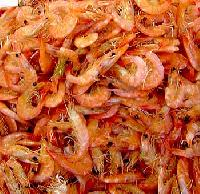 Dry Shrimps